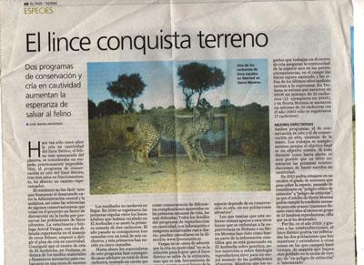 El lince conquista terreno.  Noticia en El País.