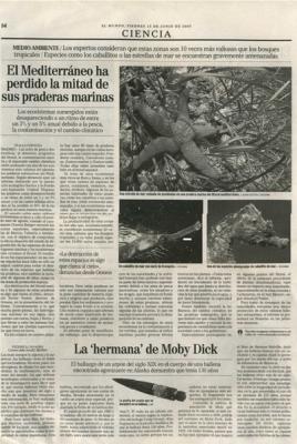 El Mediterráneo ha perdido la mitad de sus praderas marinas. Noticia en El País.